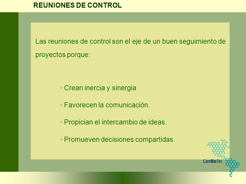 REUNIONES DE CONTROL Las reuniones de control son el eje de un buen seguimiento de proyectos porque: