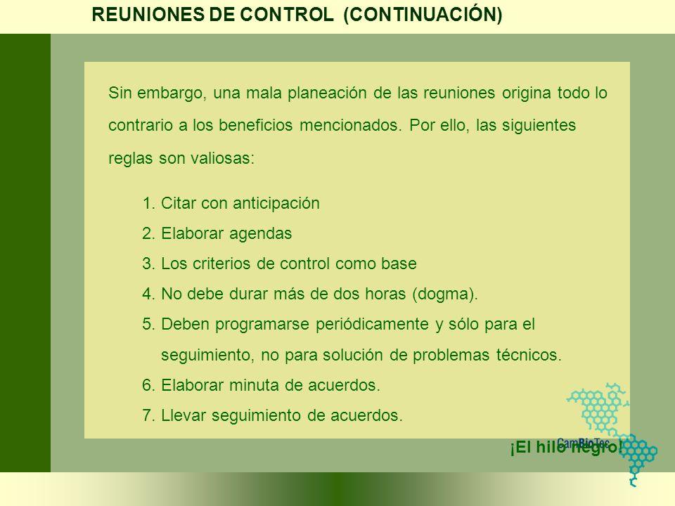 REUNIONES DE CONTROL (CONTINUACIÓN)