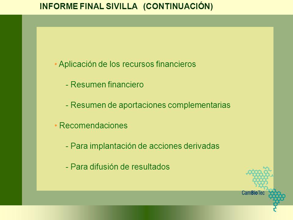 INFORME FINAL SIVILLA (CONTINUACIÓN)