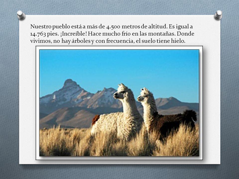 Nuestro pueblo está a más de 4. 500 metros de altitud. Es igual a 14