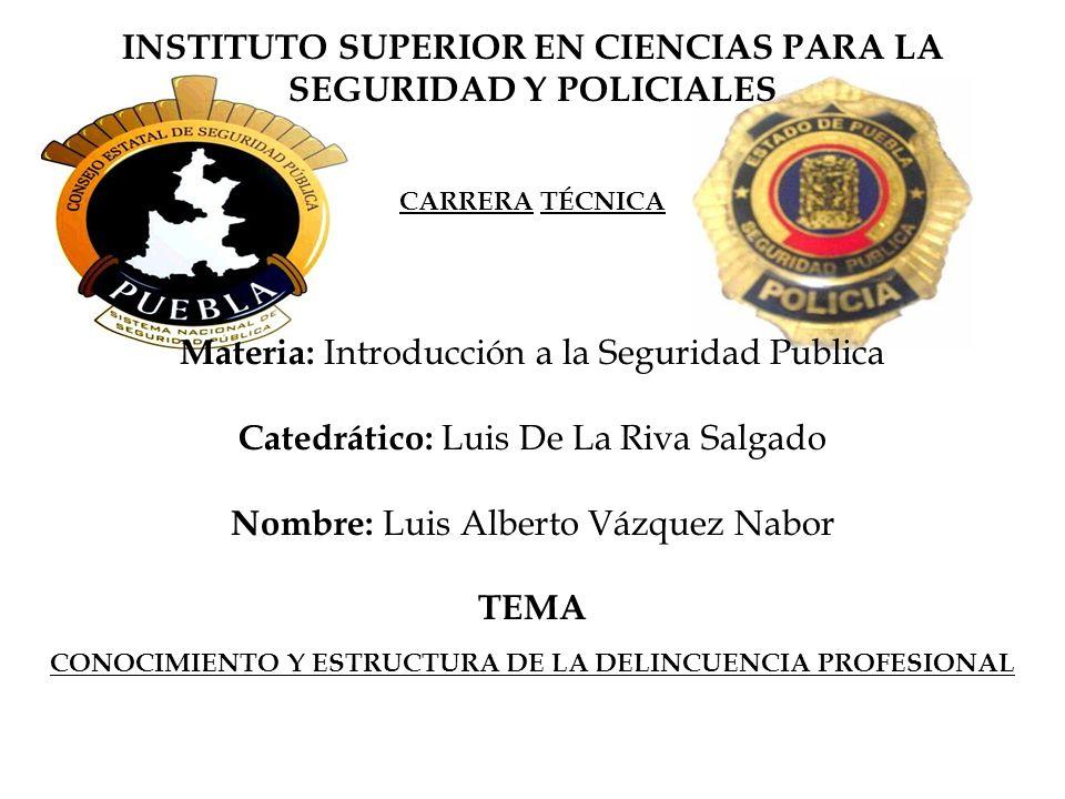 INSTITUTO SUPERIOR EN CIENCIAS PARA LA SEGURIDAD Y POLICIALES TEMA