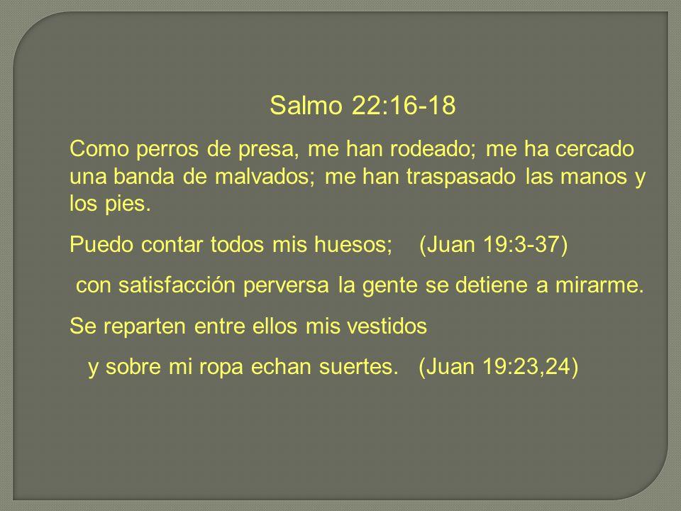 Salmo 22:16-18 Como perros de presa, me han rodeado; me ha cercado una banda de malvados; me han traspasado las manos y los pies.