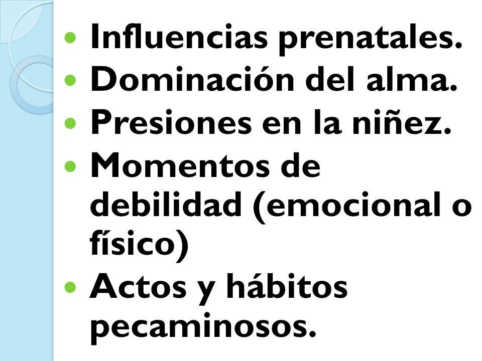 Influencias prenatales.
