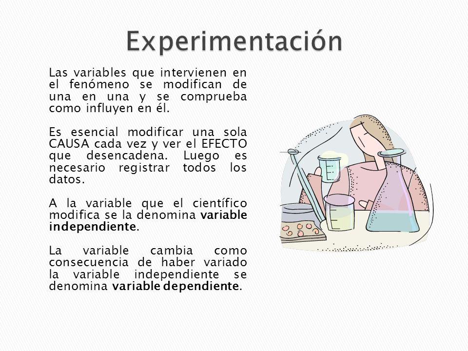 Experimentación Las variables que intervienen en el fenómeno se modifican de una en una y se comprueba como influyen en él.