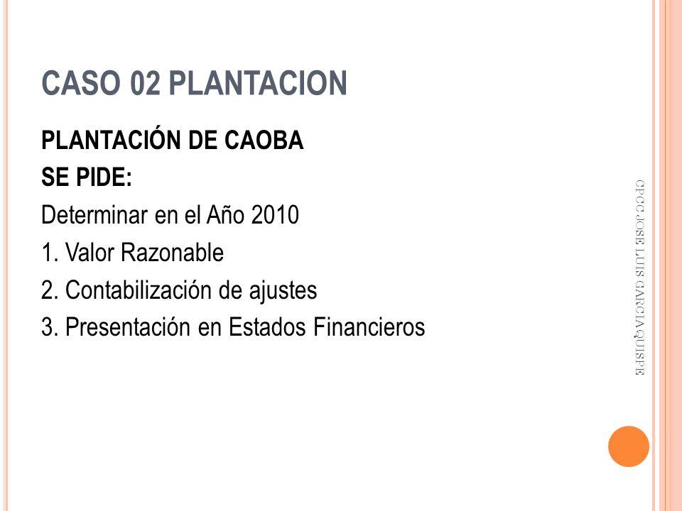 CASO 02 PLANTACION