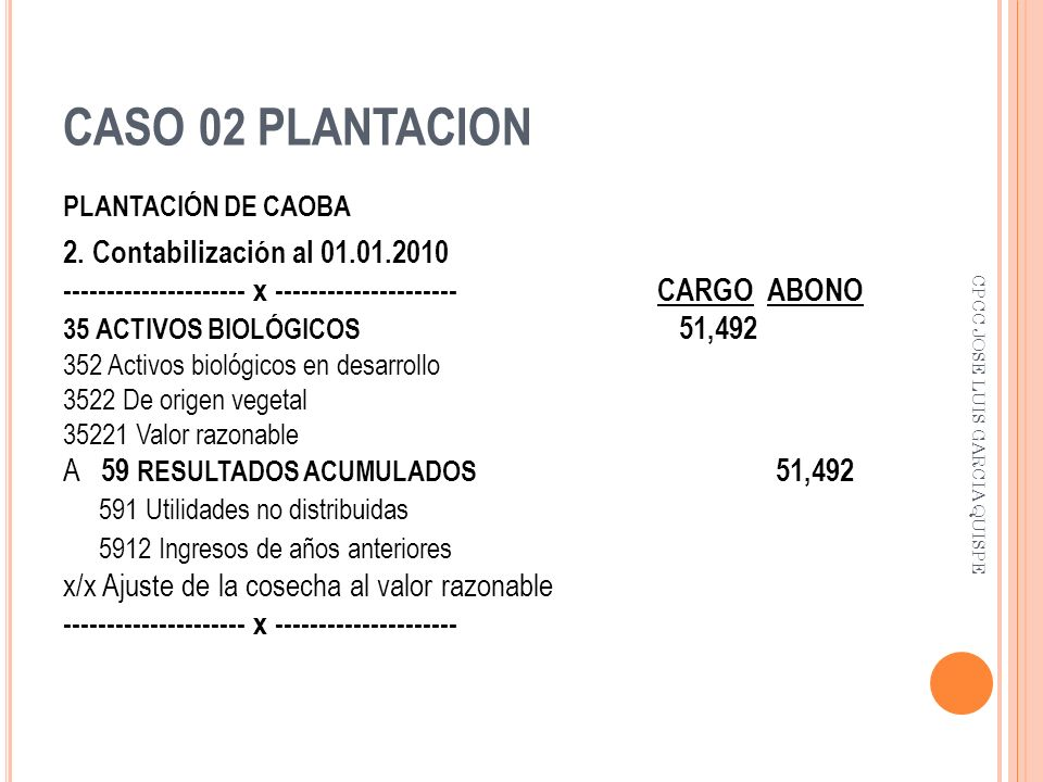CASO 02 PLANTACION 2. Contabilización al 01.01.2010