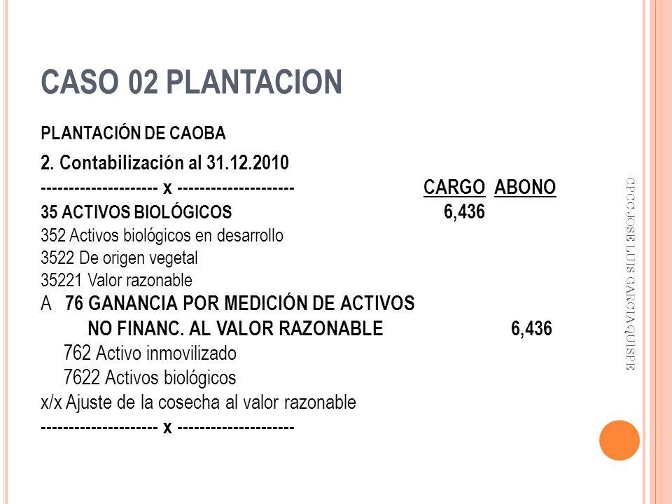 CASO 02 PLANTACION 2. Contabilización al 31.12.2010