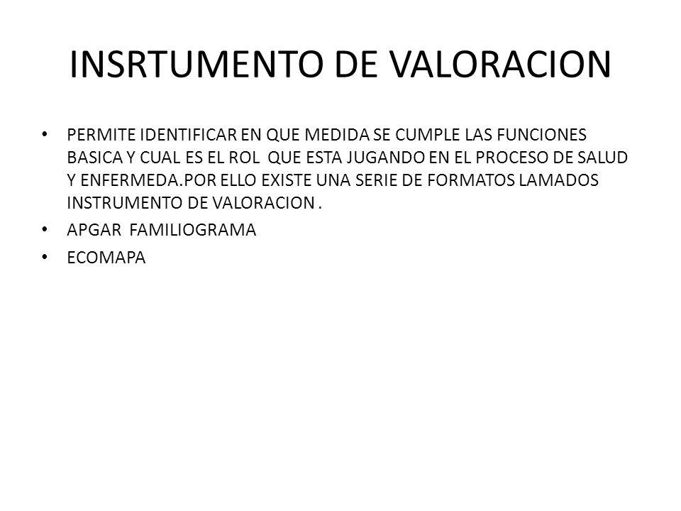 INSRTUMENTO DE VALORACION