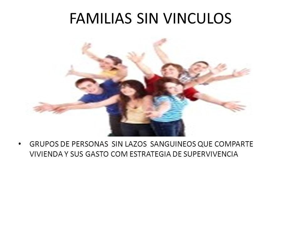 FAMILIAS SIN VINCULOS GRUPOS DE PERSONAS SIN LAZOS SANGUINEOS QUE COMPARTE VIVIENDA Y SUS GASTO COM ESTRATEGIA DE SUPERVIVENCIA.