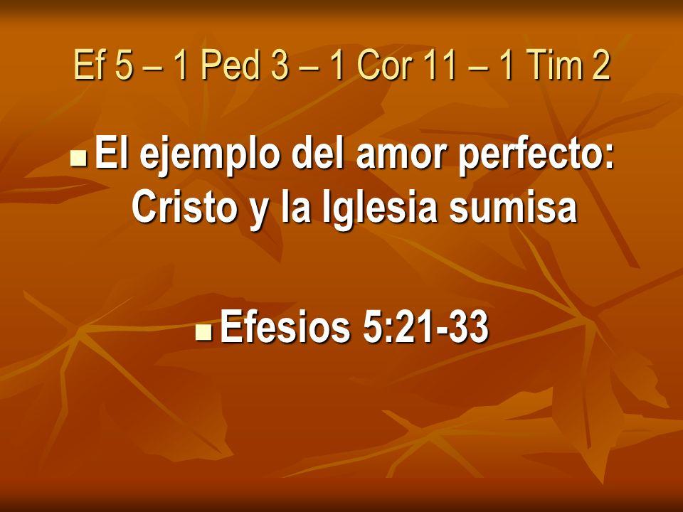 El ejemplo del amor perfecto: Cristo y la Iglesia sumisa