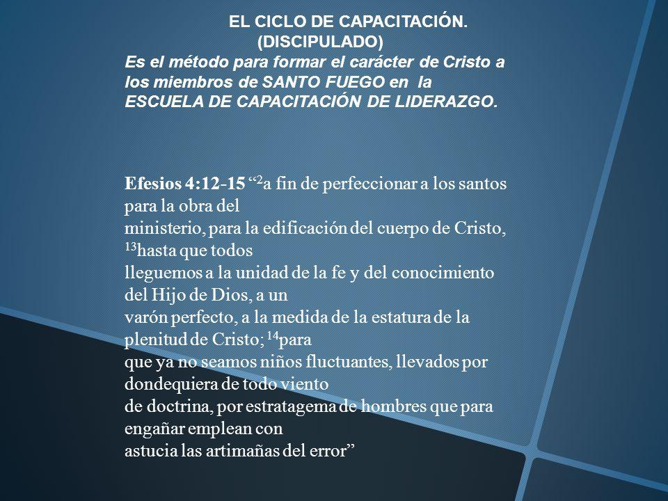 EL CICLO DE CAPACITACIÓN. (DISCIPULADO)