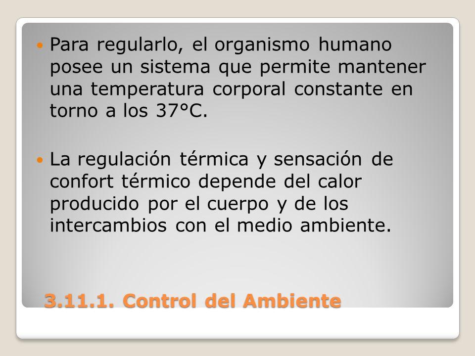 Para regularlo, el organismo humano posee un sistema que permite mantener una temperatura corporal constante en torno a los 37°C.