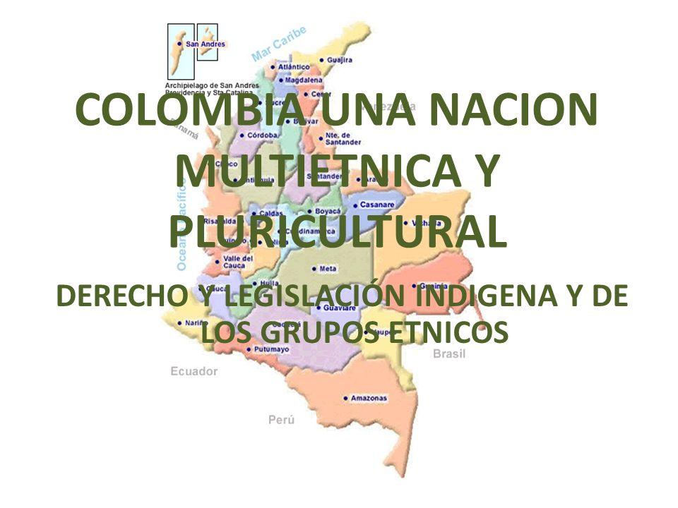 COLOMBIA UNA NACION MULTIETNICA Y PLURICULTURAL