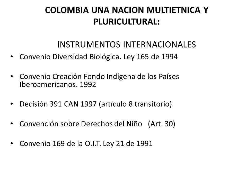 COLOMBIA UNA NACION MULTIETNICA Y PLURICULTURAL: INSTRUMENTOS INTERNACIONALES