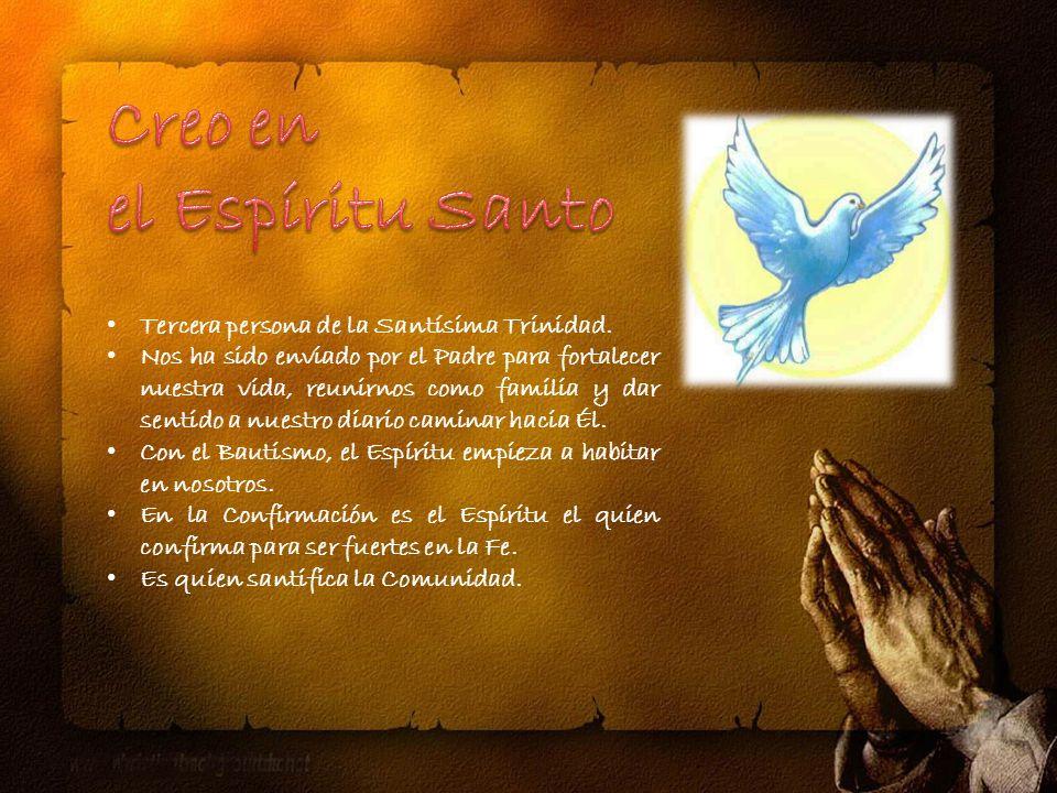 Creo en el Espíritu Santo Tercera persona de la Santísima Trinidad.