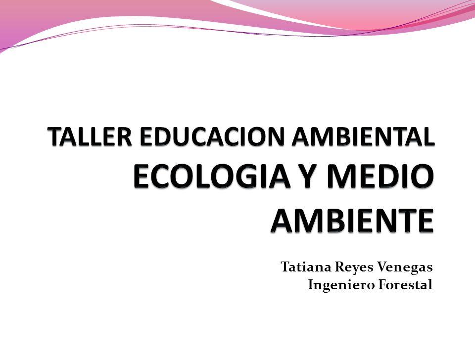 TALLER EDUCACION AMBIENTAL ECOLOGIA Y MEDIO AMBIENTE