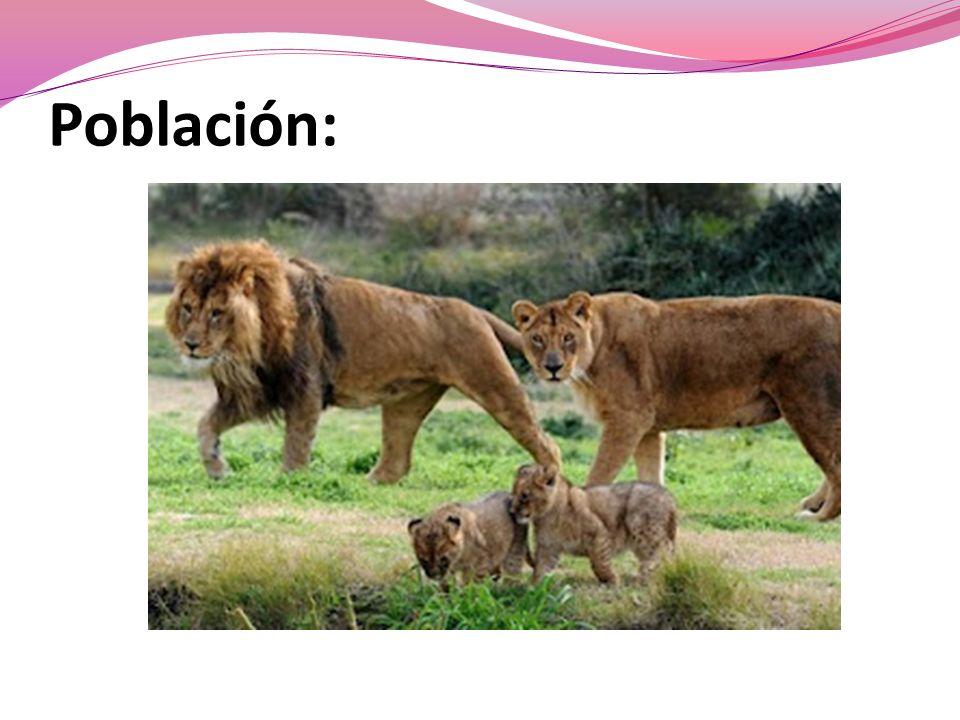 Población: