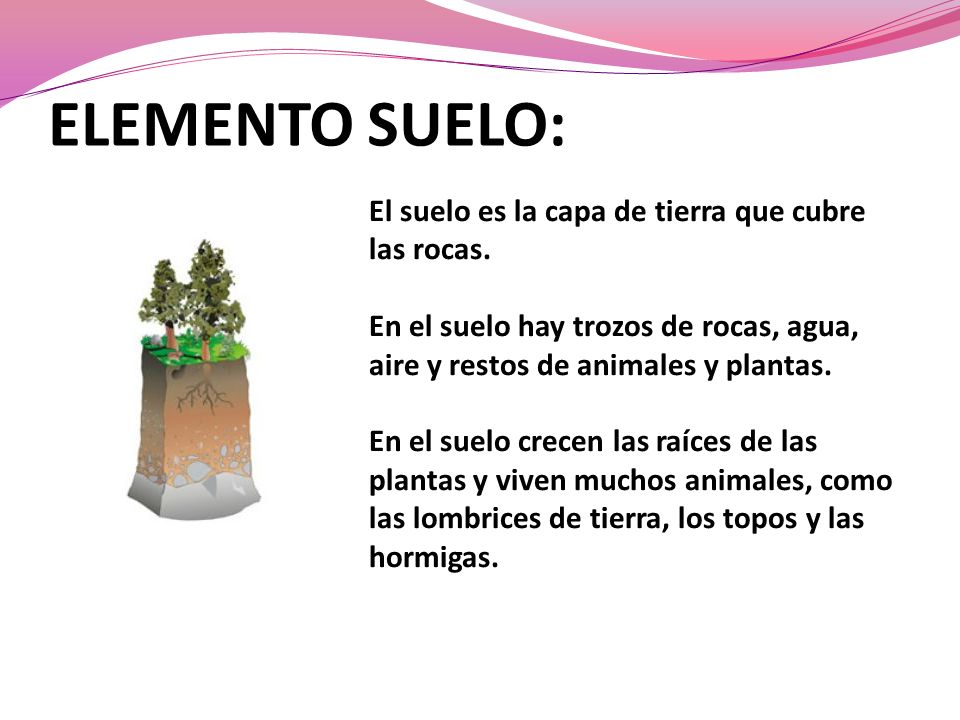 ELEMENTO SUELO: El suelo es la capa de tierra que cubre las rocas.