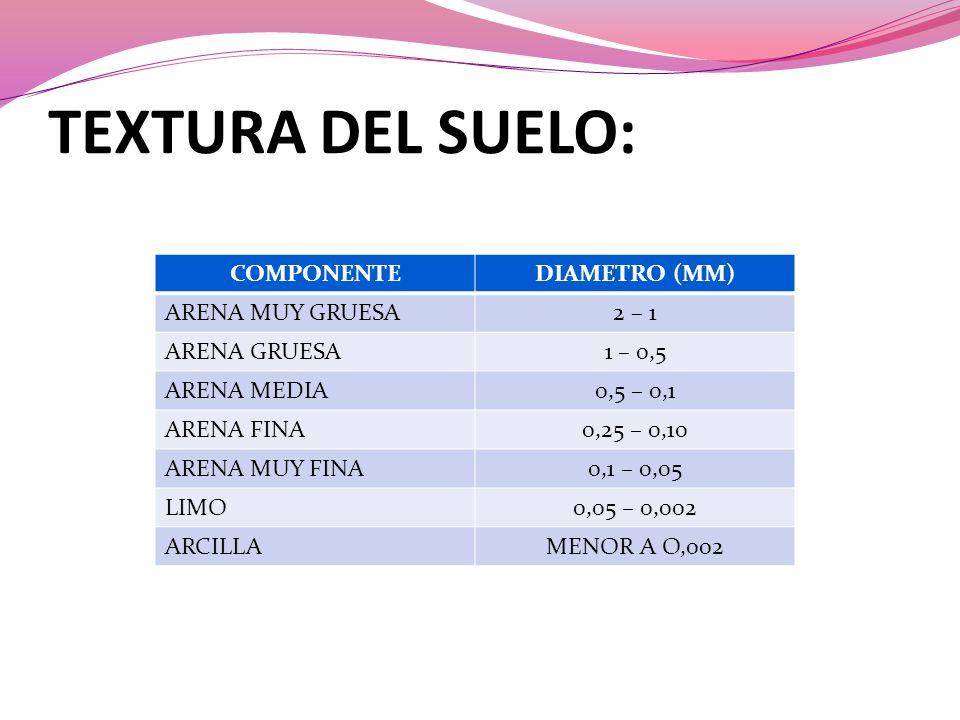 TEXTURA DEL SUELO: COMPONENTE DIAMETRO (MM) ARENA MUY GRUESA 2 – 1