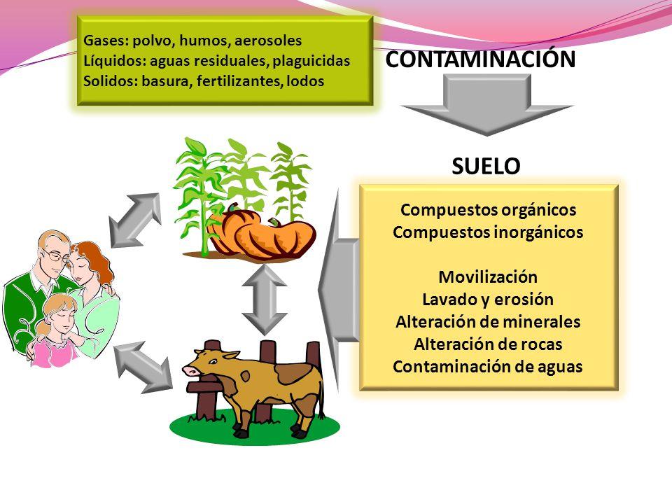 Compuestos inorgánicos Alteración de minerales Contaminación de aguas