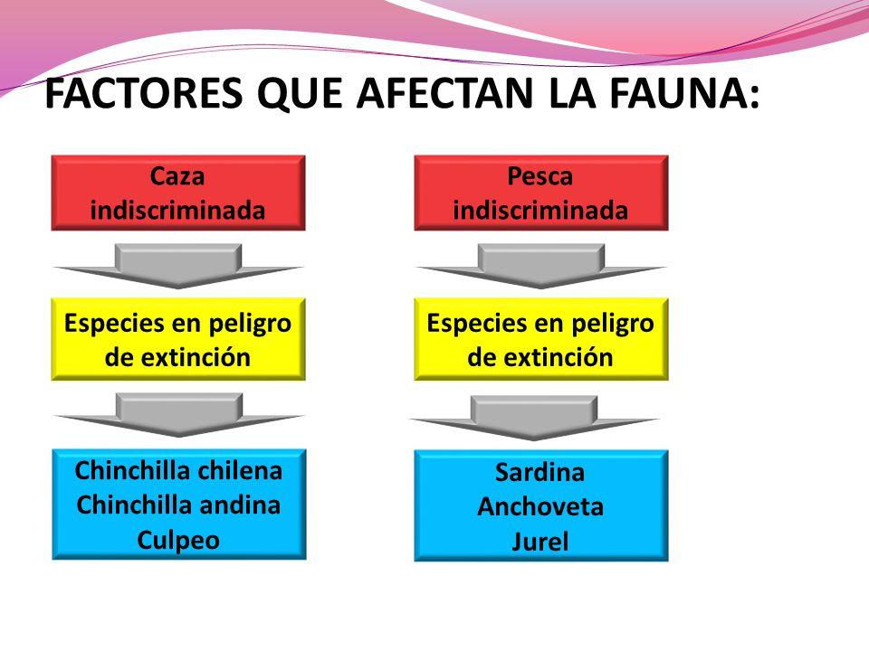FACTORES QUE AFECTAN LA FAUNA: