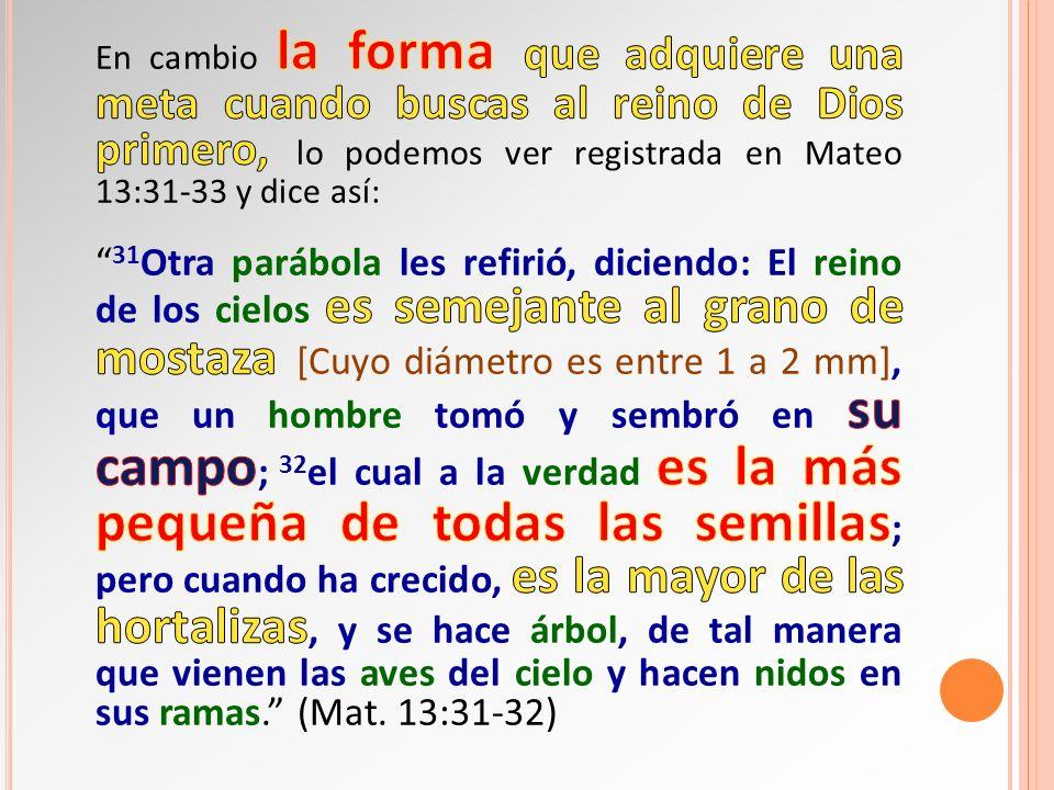 En cambio la forma que adquiere una meta cuando buscas al reino de Dios primero, lo podemos ver registrada en Mateo 13:31-33 y dice así: