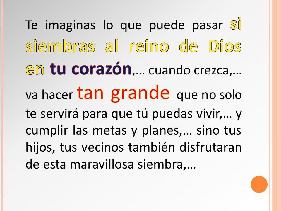 Te imaginas lo que puede pasar si siembras al reino de Dios en tu corazón,… cuando crezca,… va hacer tan grande que no solo te servirá para que tú puedas vivir,… y cumplir las metas y planes,… sino tus hijos, tus vecinos también disfrutaran de esta maravillosa siembra,…