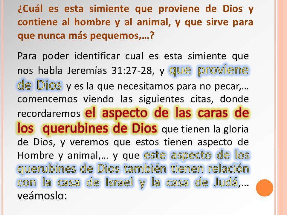 ¿Cuál es esta simiente que proviene de Dios y contiene al hombre y al animal, y que sirve para que nunca más pequemos,…