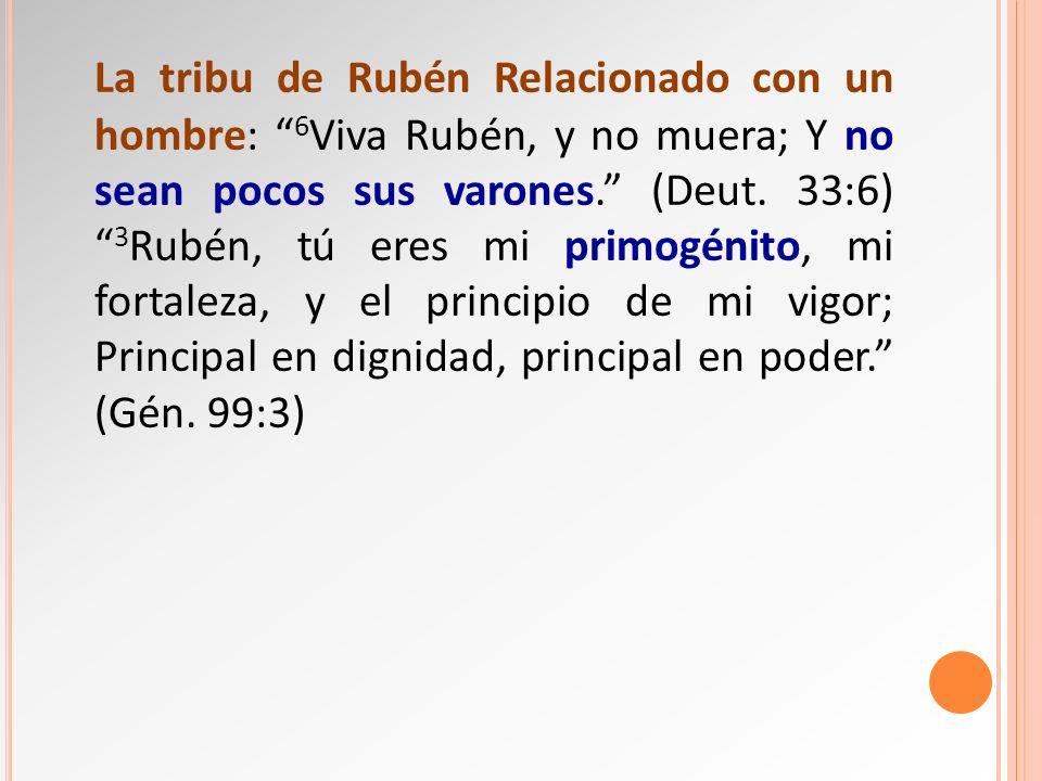 La tribu de Rubén Relacionado con un hombre: 6Viva Rubén, y no muera; Y no sean pocos sus varones. (Deut.