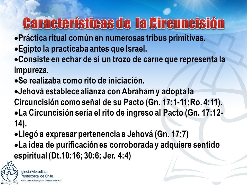Características de la Circuncisión