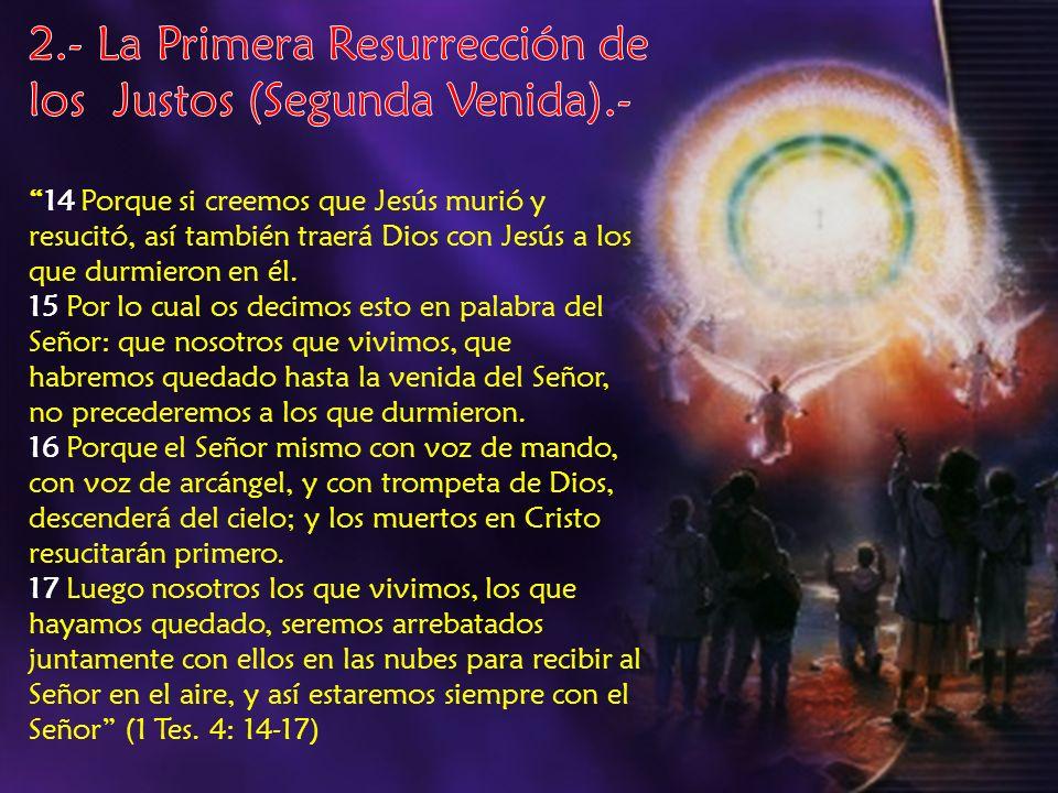2.- La Primera Resurrección de los Justos (Segunda Venida).-