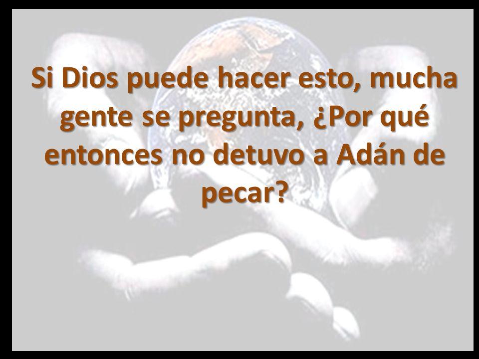 Si Dios puede hacer esto, mucha gente se pregunta, ¿Por qué entonces no detuvo a Adán de pecar