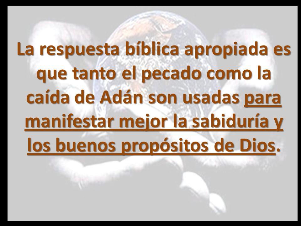 La respuesta bíblica apropiada es que tanto el pecado como la caída de Adán son usadas para manifestar mejor la sabiduría y los buenos propósitos de Dios.