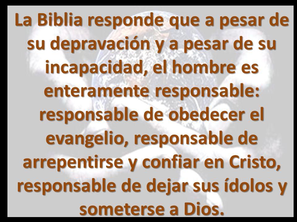 La Biblia responde que a pesar de su depravación y a pesar de su incapacidad, el hombre es enteramente responsable: responsable de obedecer el evangelio, responsable de arrepentirse y confiar en Cristo, responsable de dejar sus ídolos y someterse a Dios.