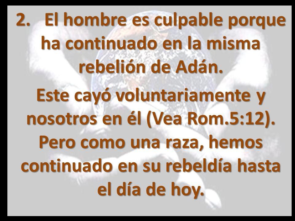 2. El hombre es culpable porque ha continuado en la misma rebelión de Adán.