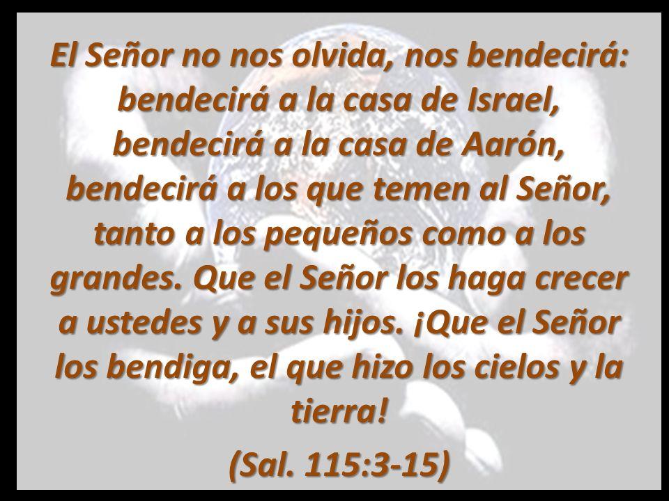 El Señor no nos olvida, nos bendecirá: bendecirá a la casa de Israel, bendecirá a la casa de Aarón, bendecirá a los que temen al Señor, tanto a los pequeños como a los grandes. Que el Señor los haga crecer a ustedes y a sus hijos. ¡Que el Señor los bendiga, el que hizo los cielos y la tierra!