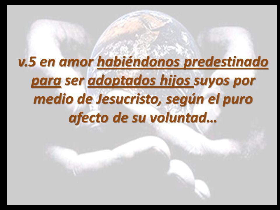 v.5 en amor habiéndonos predestinado para ser adoptados hijos suyos por medio de Jesucristo, según el puro afecto de su voluntad…