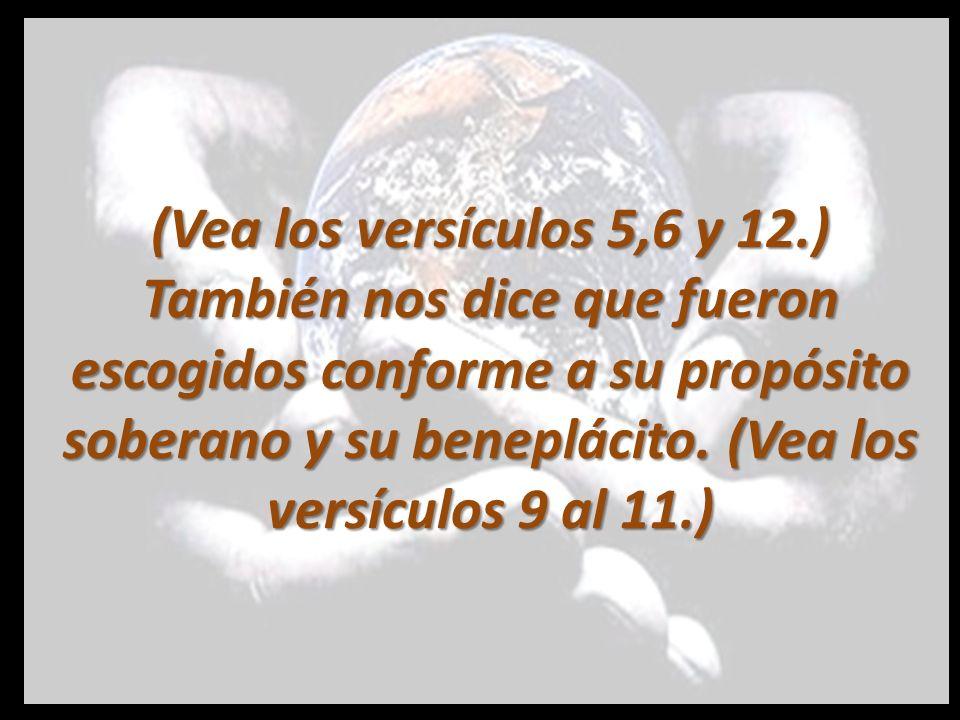 (Vea los versículos 5,6 y 12.) También nos dice que fueron escogidos conforme a su propósito soberano y su beneplácito.