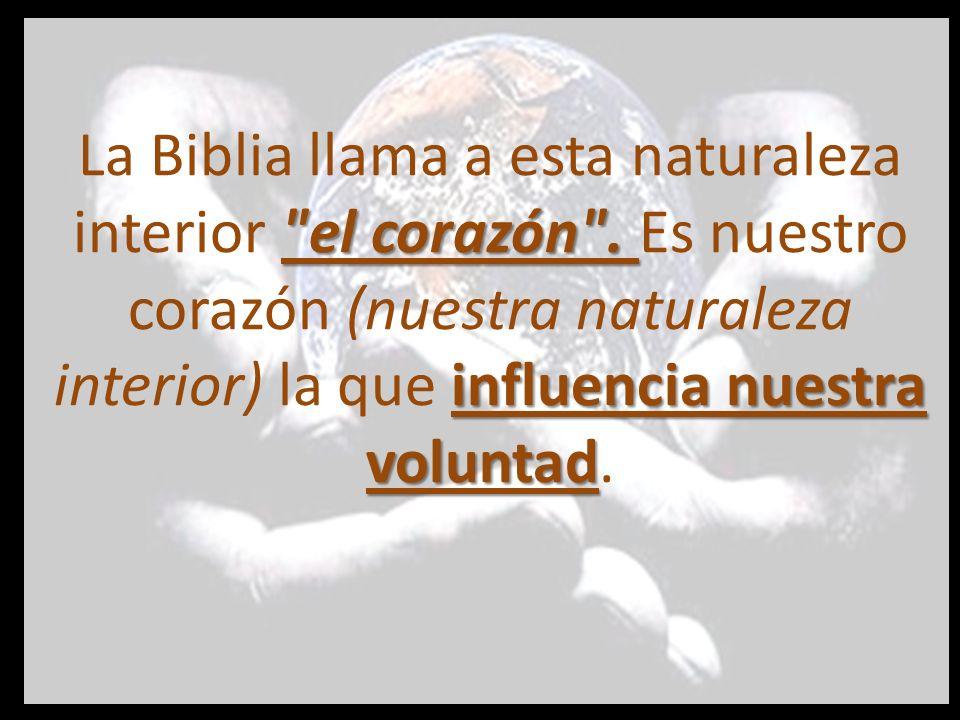 La Biblia llama a esta naturaleza interior el corazón