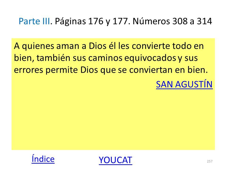 Parte III. Páginas 176 y 177. Números 308 a 314