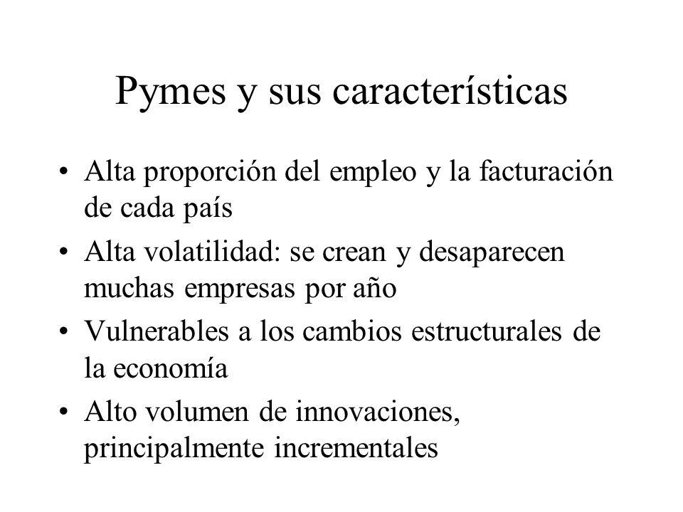 Pymes y sus características