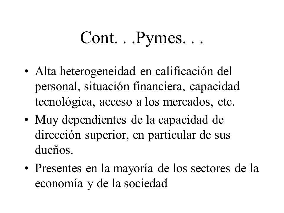 Cont. . .Pymes. . . Alta heterogeneidad en calificación del personal, situación financiera, capacidad tecnológica, acceso a los mercados, etc.