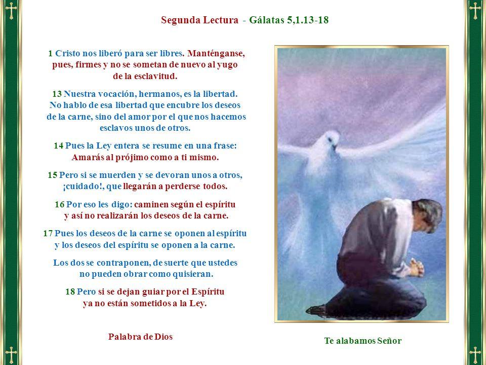 Segunda Lectura - Gálatas 5,1.13-18