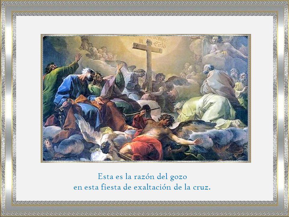 Esta es la razón del gozo en esta fiesta de exaltación de la cruz.