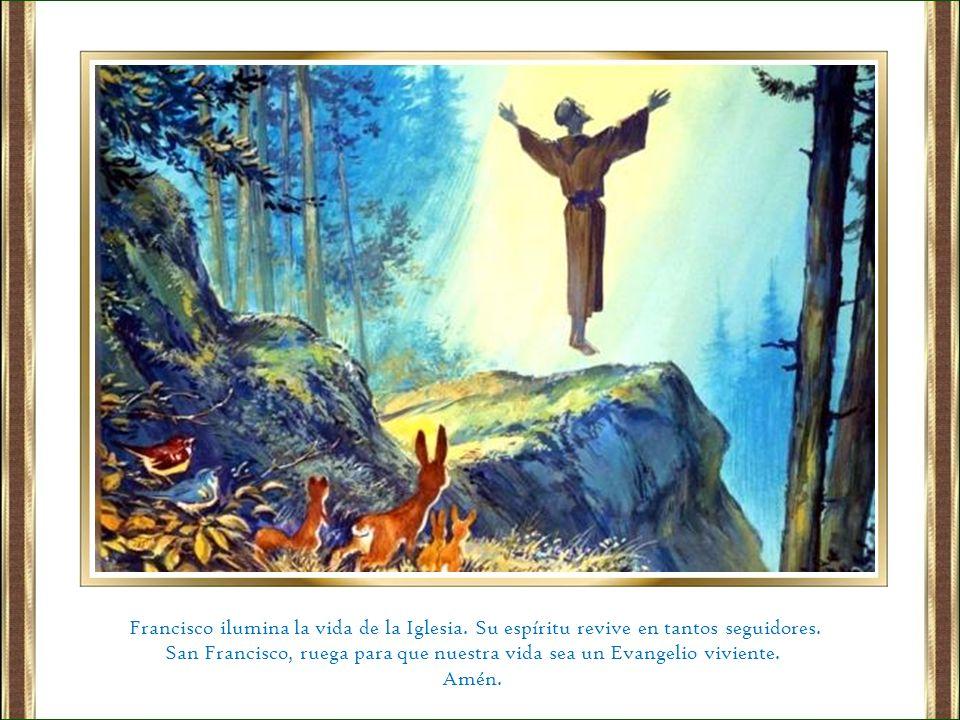 San Francisco, ruega para que nuestra vida sea un Evangelio viviente.