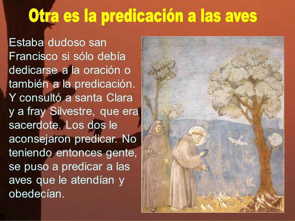 Otra es la predicación a las aves