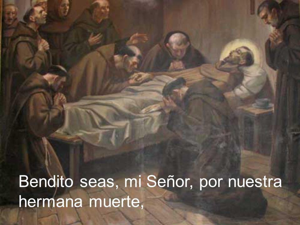 Bendito seas, mi Señor, por nuestra hermana muerte,
