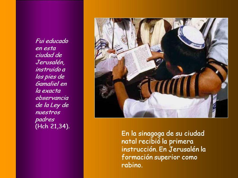 Fui educado en esta ciudad de Jerusalén, instruido a los pies de Gamaliel en la exacta observancia de la Ley de nuestros padres (Hch 21,34).