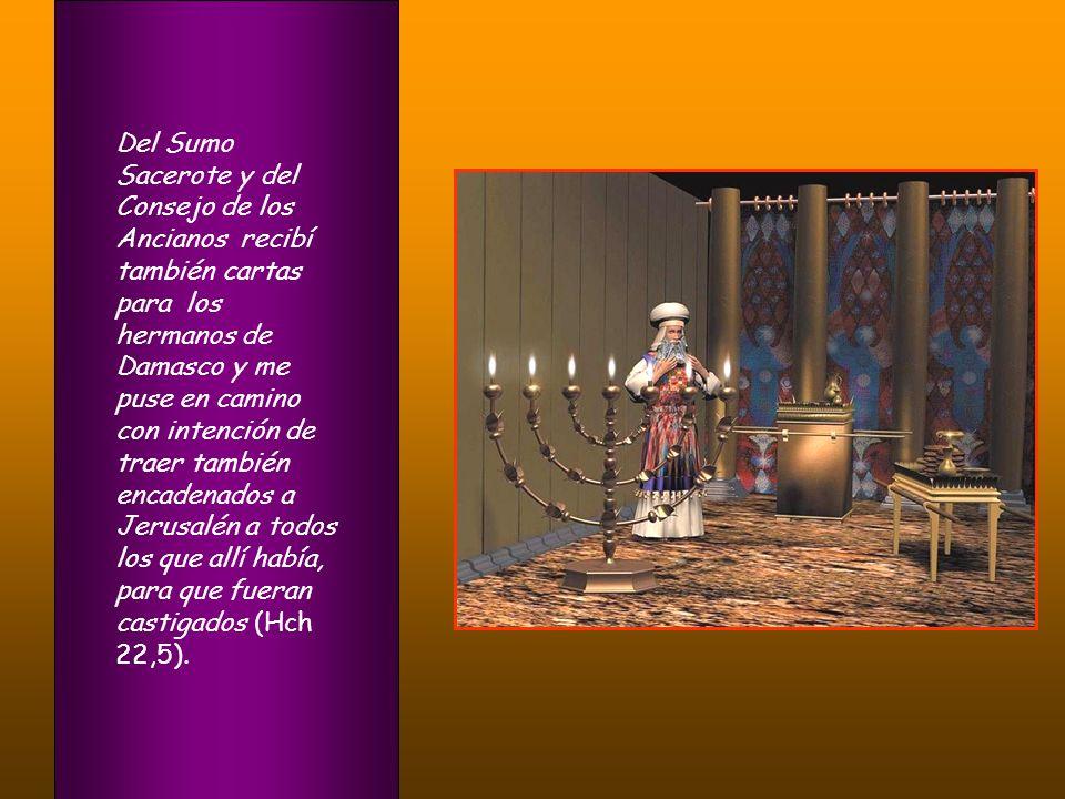 Del Sumo Sacerote y del Consejo de los Ancianos recibí también cartas para los hermanos de Damasco y me puse en camino con intención de traer también encadenados a Jerusalén a todos los que allí había, para que fueran castigados (Hch 22,5).