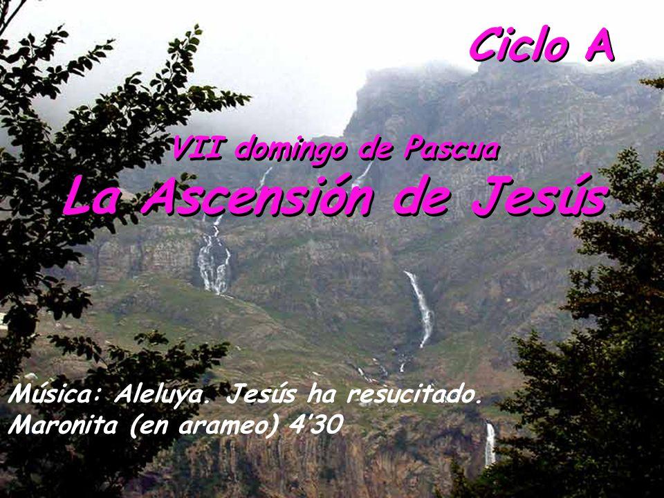 La Ascensión de Jesús Ciclo A VII domingo de Pascua